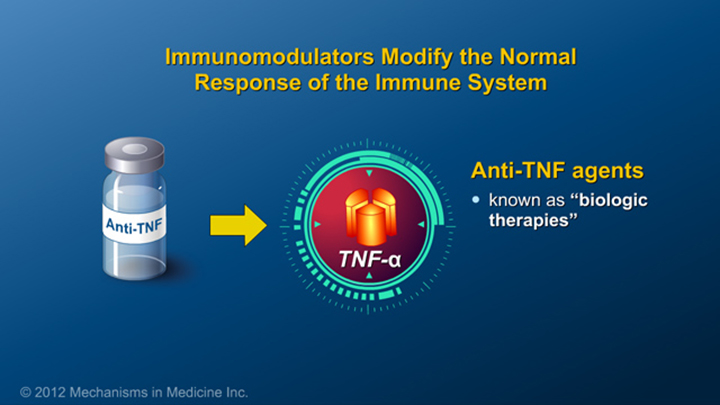 Immunomodulators and IBD