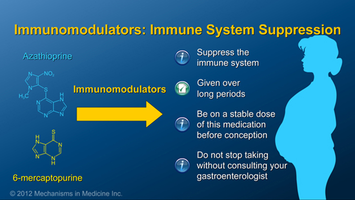 Immunomodulators for IBD and Pregnancy