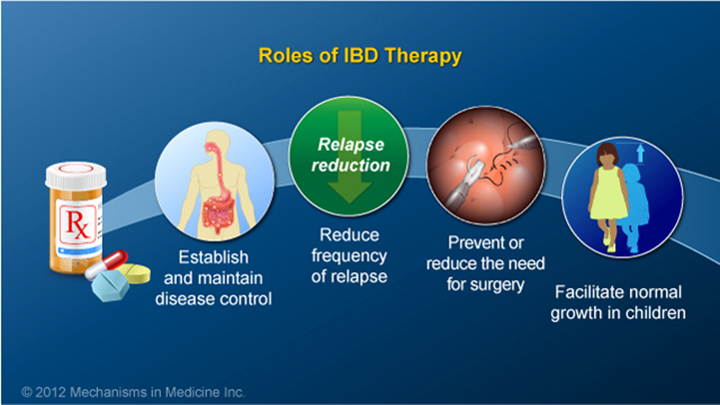 Roles of IBD Therapy
